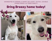 Breezy is excited to share her love